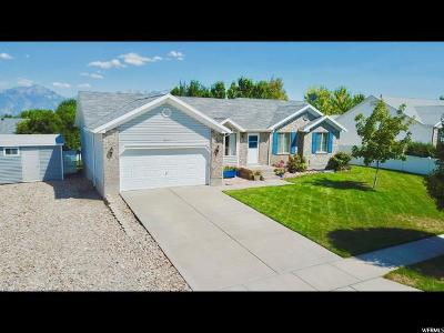 West Jordan Single Family Home For Sale: 8917 S Yellow Pine St
