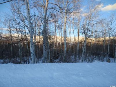 Wasatch County Residential Lots & Land For Sale: 9742 Ridge Pine Rd