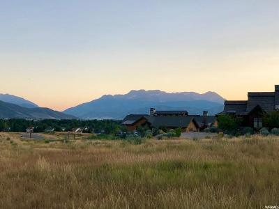 Wasatch County Residential Lots & Land For Sale: 530 N Haystack Mountain Dr (Lot 29)