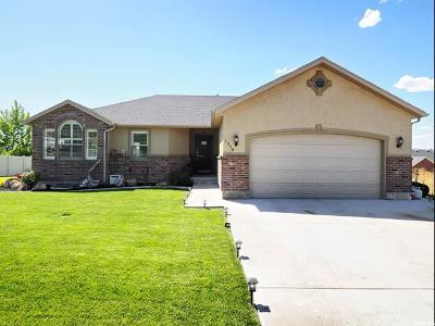 Nephi Single Family Home For Sale: 1358 S 200 E