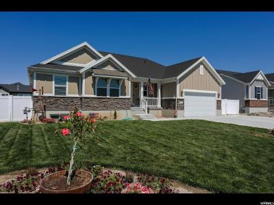 Davis County Single Family Home For Sale: 3448 W 2500 N