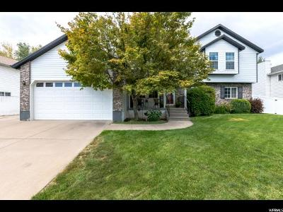 Kaysville Single Family Home For Sale: 595 E 1250 S