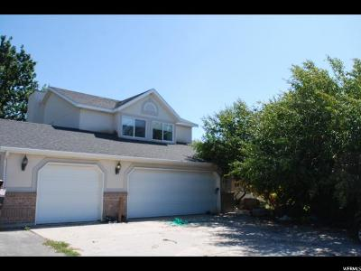Tooele County Single Family Home For Sale: 884 E Bates Canyon Rd