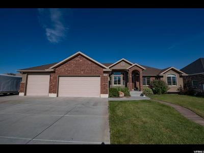 Davis County Single Family Home For Sale: 2033 S 1230 W