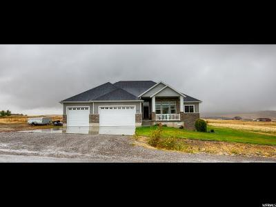 Mendon Single Family Home For Sale: 8085 W 1900 N