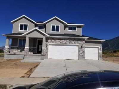 Payson Single Family Home For Sale: 555 S 1340 E
