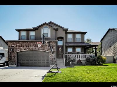 Weber County Single Family Home For Sale: 3317 W 4375 S