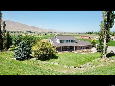 Payson Single Family Home For Sale: 9444 S 4350 W