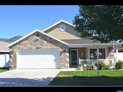 Weber County Single Family Home For Sale: 2444 N Williamsburg Ave