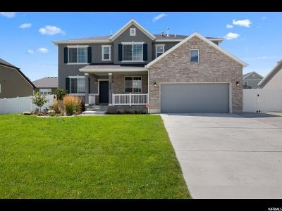 West Jordan Single Family Home For Sale: 8758 S Duck Ridge Way