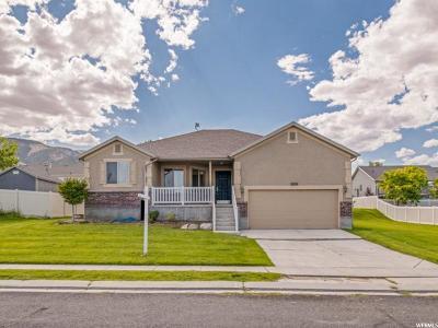 Saratoga Springs Single Family Home For Sale: 3839 S Lake Mountain Dr