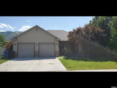 Spanish Fork Single Family Home For Sale: 2094 E 1630 S