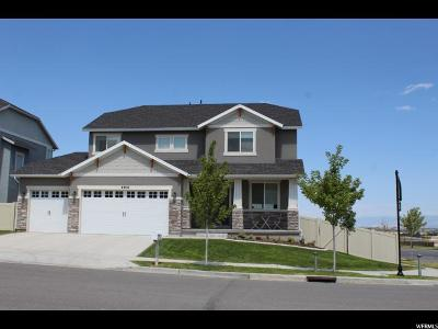 Herriman Single Family Home For Sale: 4406 W Lower Meadow Dr