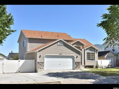 Tooele County Single Family Home For Sale: 503 E 700 N