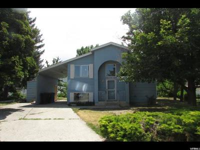 Single Family Home For Sale: 348 Willow Dr.