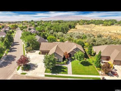 Lehi Single Family Home For Sale: 1462 E 2000 N