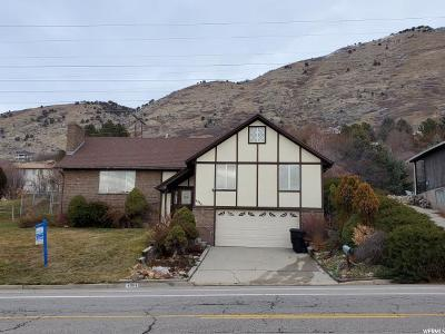 Provo Single Family Home For Sale: 4084 N Foothill Dr