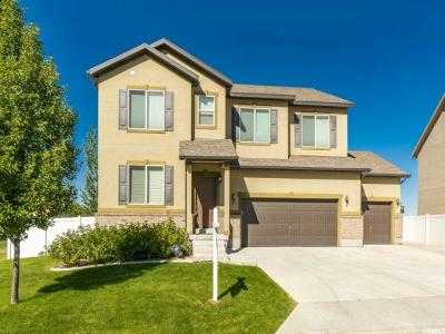 Layton Single Family Home For Sale: 3215 N Falcon Way