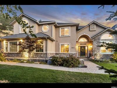 Draper Single Family Home For Sale: 2048 E Bear Ridge Cv S