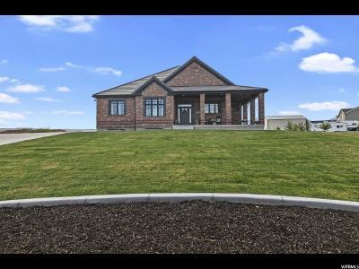 Eagle Mountain Single Family Home For Sale: 9437 N Horizon Dr W