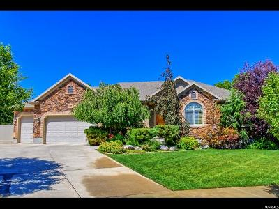 South Jordan Single Family Home For Sale: 11302 S 2450 W