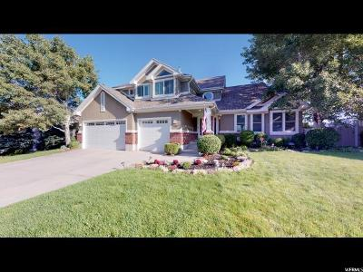 Sandy Single Family Home For Sale: 2161 E Debeers Dr