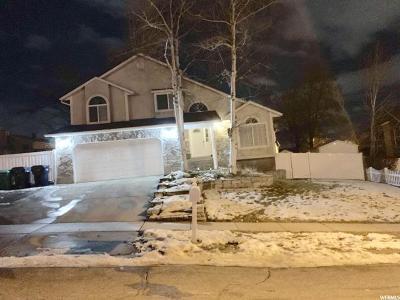 Sandy Single Family Home For Sale: 1066 E Castle Rock Rd S
