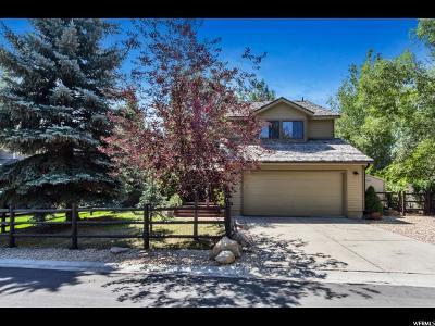 Park City Single Family Home For Sale: 1347 W Quail Meadow Rd