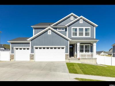Draper Single Family Home Backup: 14904 S Canyon Pointe Rd E