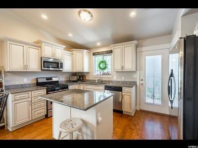 Eagle Mountain Single Family Home For Sale: 3702 N Bountiful Ln