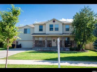 Springville Single Family Home For Sale: 997 W 900 S