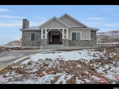 Herriman Single Family Home For Sale: 15067 S Spring Canyon Dr