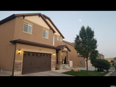 West Jordan Single Family Home For Sale: 6563 S Days End Ct