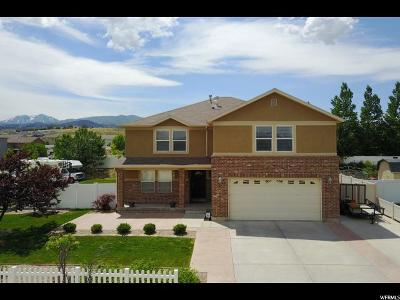 Herriman Single Family Home For Sale: 13808 S Boyd Dr