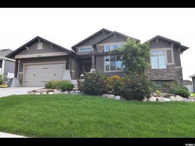 Elk Ridge Single Family Home For Sale: 1061 N Bear Hollow Ln E