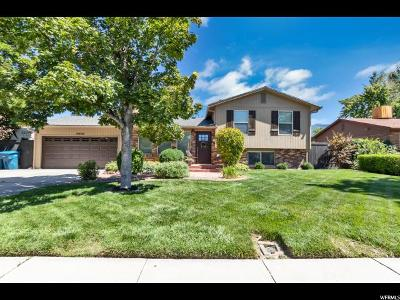 Sandy Single Family Home For Sale: 10499 S 420 E