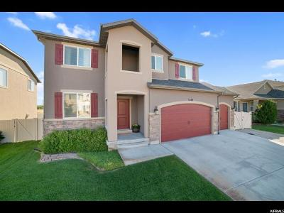 Utah County Single Family Home For Sale: 3789 Bull Hollow Way