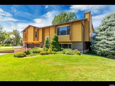 Sandy Single Family Home For Sale: 11032 S Lynford Dr