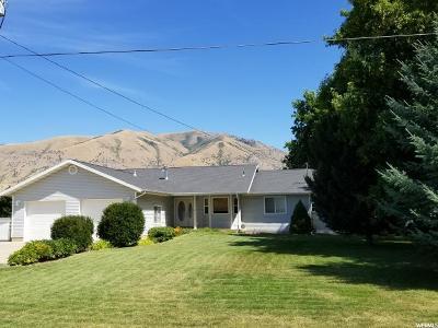 Hyrum Single Family Home For Sale: 173 S 700 E