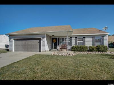 Spanish Fork Single Family Home For Sale: 3051 E 1530 S