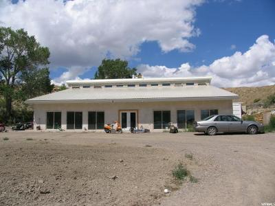 Emery County Single Family Home For Sale: 2430 S State Rd 10