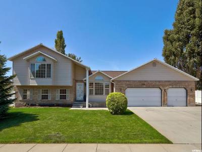 West Jordan Single Family Home For Sale: 8098 S Mapleleaf Way W