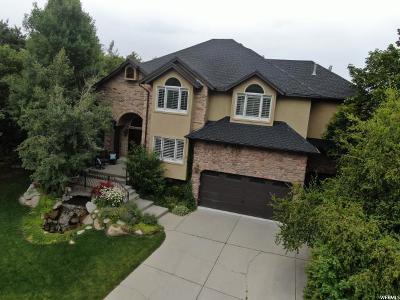 Sandy Single Family Home For Sale: 9712 S Alpine Valley Cir E