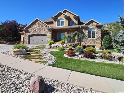 Draper Single Family Home For Sale: 14678 S Woods Landing Ct S