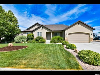 Spanish Fork Single Family Home For Sale: 1673 E 130 N
