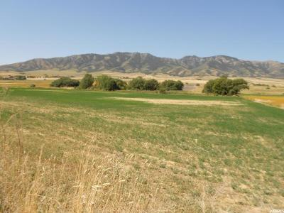 Clarkston Residential Lots & Land For Sale: 11300 N 8800 W