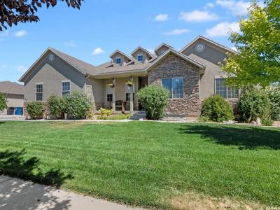 Spanish Fork Single Family Home For Sale: 1441 S 1760 E