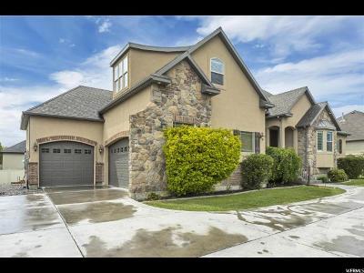 American Fork Single Family Home For Sale: 507 N 1100 E