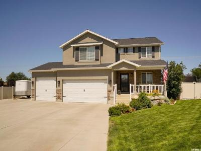 Layton Single Family Home For Sale: 34 S 3600 W
