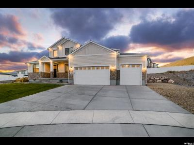 Herriman Single Family Home For Sale: 14194 S Maddy Heights Cir